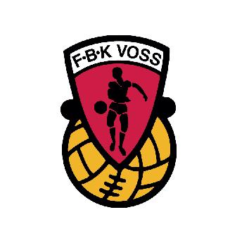 Resultado de imagem para FBK Voss